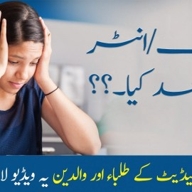 Successful Career Path for Students after Matric & Intermediate Education :: Students E-Cafe